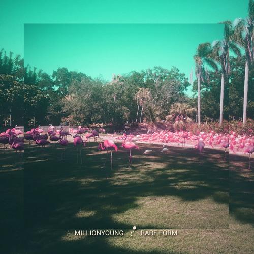 Millionyoung - Rare Form