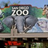 San Diego Zoo-Hippo-Radio Commercial