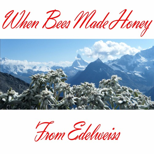 We Are Wood - When Bees Made Honey From Edeweiss