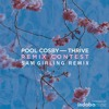 Pool Cosby - Thrive ft. Tiger Darrow (Sam Girling Remix)