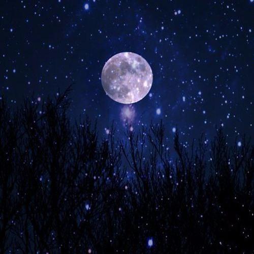 Guided Meditation for Deep Sleep