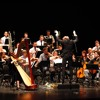 Harp Guitar Double Concerto (2016) Live Recording