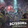 The Scissors - 10 Years of VIVA - Eraser Full Band (Demo)