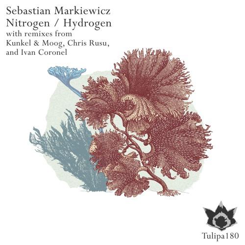 Sebastian Markiewicz - Nitrogen (Chris Rusu Remix)