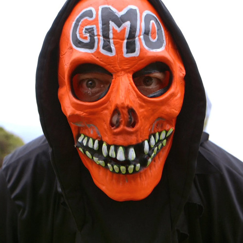 Understanding GMOs and the Future of Food