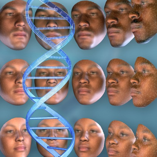 Deconstructing African-American Ancestry & DNA