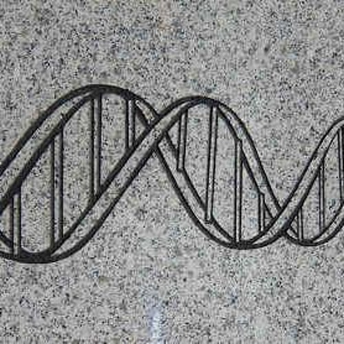 Infertility & Genetics