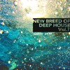 08. Dennis Ferrer feat. K.T. Brooks - How Do I Let Go (Marco Tegui Remix)