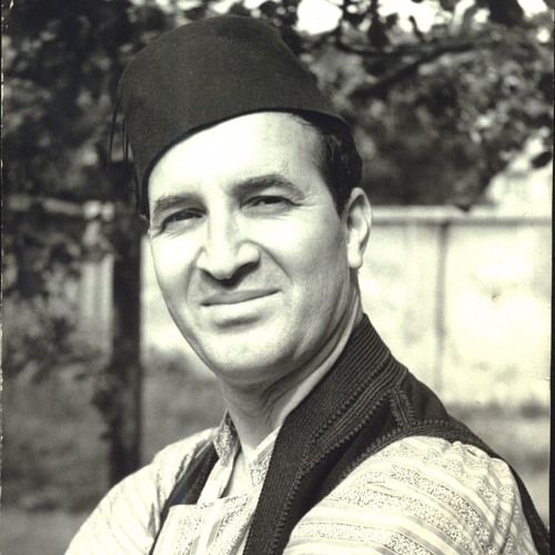 Himzo Polovina, Ali-paša na Hercegovini