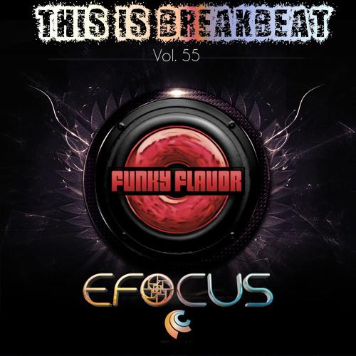 This is Breakbeat Vol. 55 - Efocus
