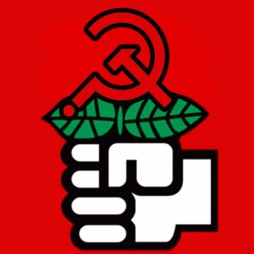 Episode 55: Special - DSA Convention Interviews w/Will Menaker