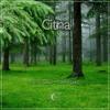 New Soul - Yael Naim (citna remix) (buy=free download)