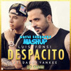 Despacito (DJ Stevie's Multi-Language Mashup vs DJ Chilly's Extended Edit)