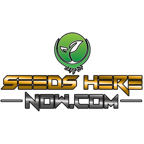 Episode 12 - James Bean Of Seeds Here Now