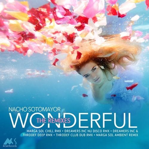 Nacho Sotomayor - Wonderful (Marga Sol Chill Rmx)