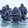 The Navy SEALs