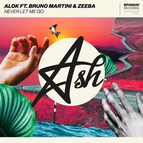 Baixar Alok, Bruno Martini, Zeeba - Never Let Me Go (Ash Rework/Bootleg)