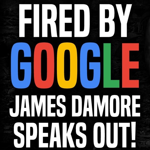 FDR 3783 Google Memo: Fired Employee Speaks Out! | James Damore and Stefan Molyneux