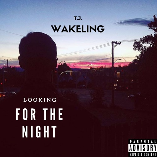 Looking For The Night [Free Download]
