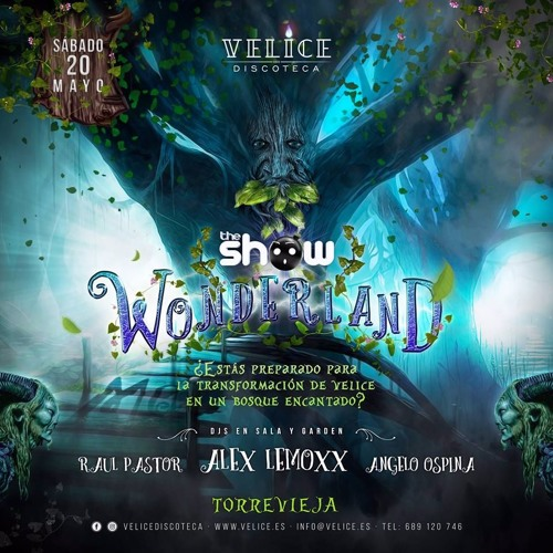 Sesión The Show Wonderland
