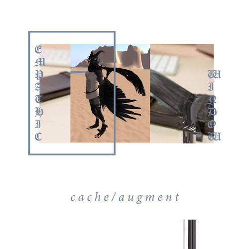 """Cache/Augment"" Preview"