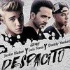 Fast and Furious 8 - Despacito Ft. Luis Fonsi & Daddy Yankee & Justin Bieber (Prince LJ Remix)