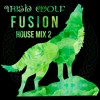 Irish Wolf Fusion - House Music Mix 2