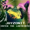 Jayzonit - Enter The Labyrinth (free download)