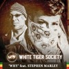 Why feat. Stephen Marley