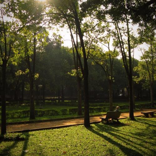 Own Your City - Cubbon Park - Bangalore