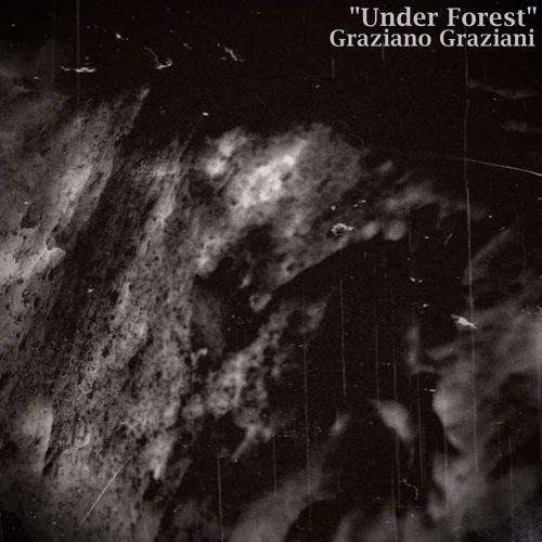 Under Forest (Original Mix)