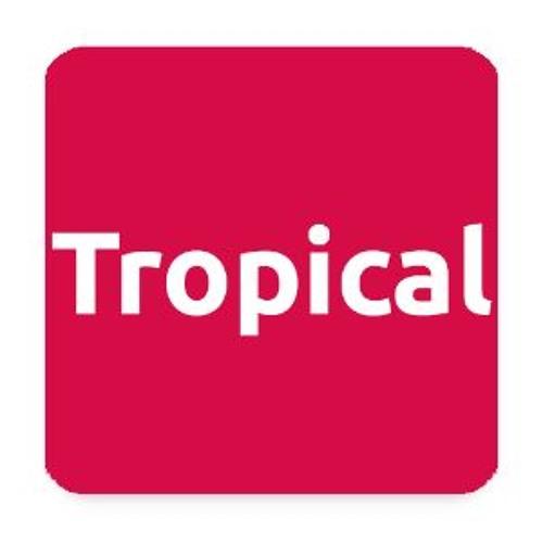 Artistica Tropical - Latina
