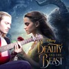 "Dan Stevens - Evermore (From ""Beauty and the Beast""/Acoustic Cover)"