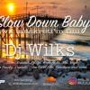 Slow Down Baby, DJ Wilks