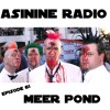 Episode 61: Meer Pond