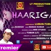 Haarigali ¦¦ Brand New Odia Song ¦¦ Lt Production Premier Mp3