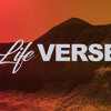 Life Verse - Part 2 - Nigel Byrne