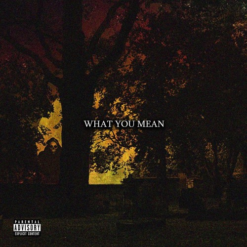WHAT YOU MEAN (Prod By. NameIsTAZ)