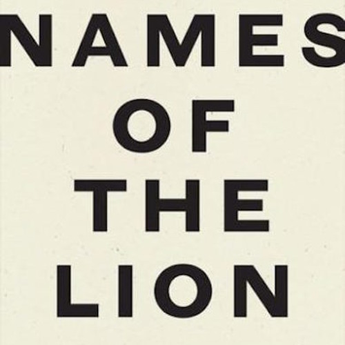 Names Of The Lion: David Larsen in conversation with Stephen Sparks