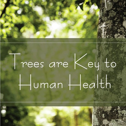 Tree Are Key to Healthy Lives