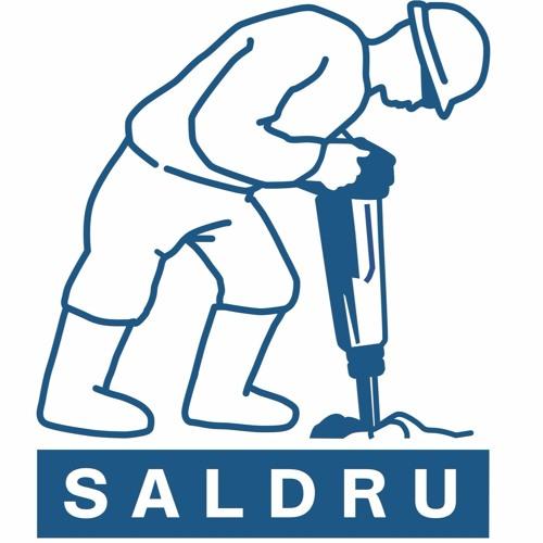 The Story of SALDRU's Logo