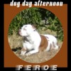 FEROE - Dog Day Afternoon (Produced By Jay Fehrman)
