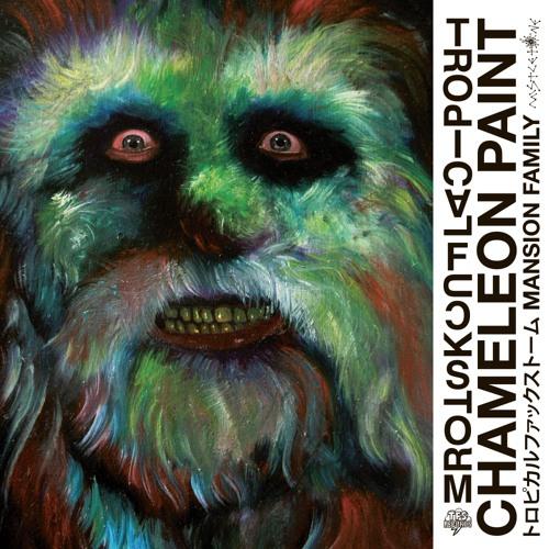 TFS - Chameleon Paint