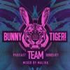 Malikk - Bunny Tiger Team Podcast 017 2017-08-18 Artwork