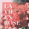 Andrea Bocelli - La Vie En Rose (COVER)