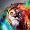 DuRu Tha King - New Charlotte Feat. Deniro Farrar YB BankRoll Bird