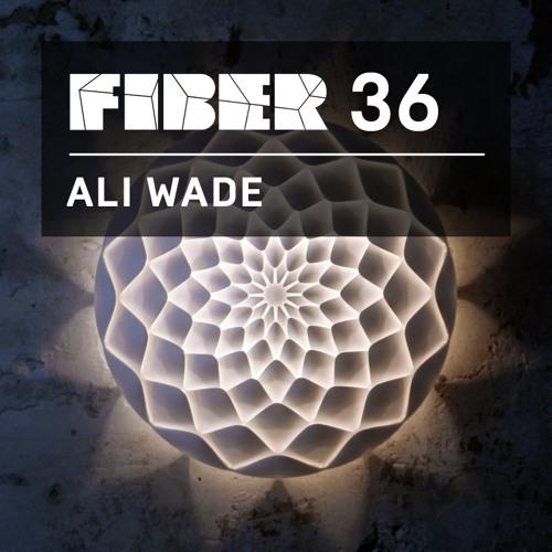 FIBER Podcast 36 - Ali Wade