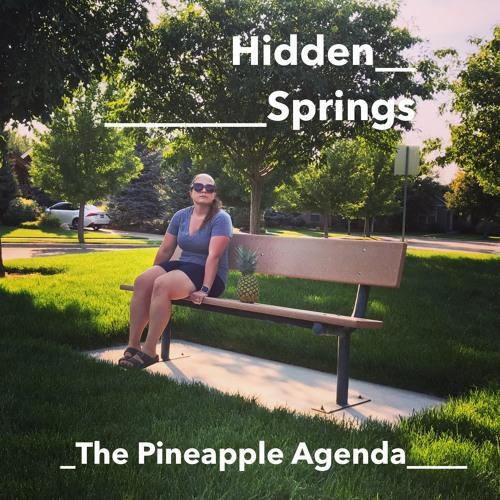 PINEAPPLE AGENDA: Hidden Springs (2017 Radio Race)
