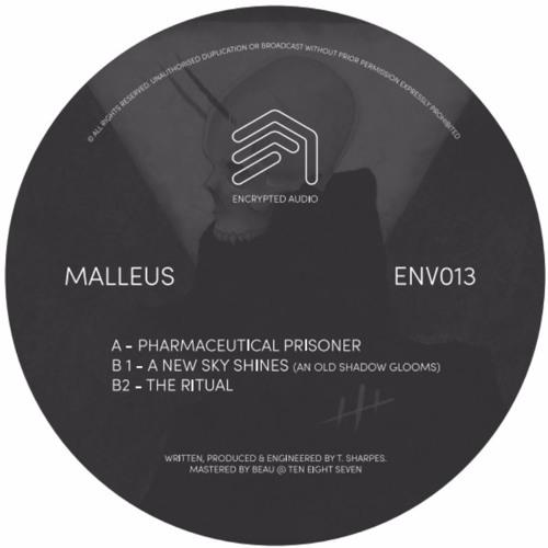 ENV013 - Malleus [FORTHCOMING]
