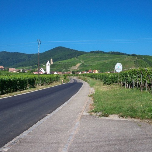 Road Trip : la route des Vins d'Alsace